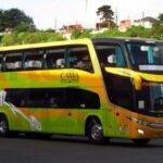 Logo de Buses Tepual